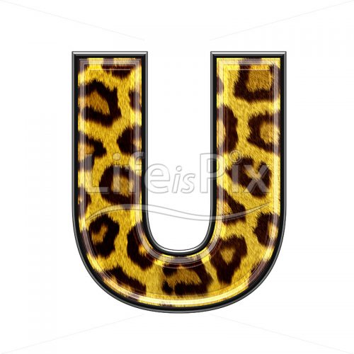 3d capital letter with panther skin texture – U – Royalty free stock photos, illustrations and 3d letters fonts