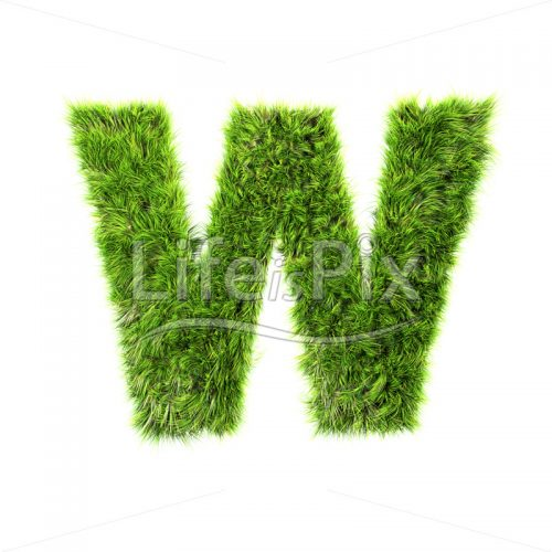 3d grass capital letter isolated on white background – W - Royalty free stock photos, illustrations and 3d letters fonts