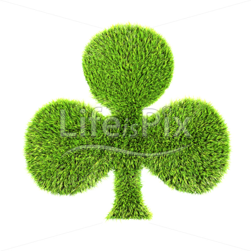 3d grass club isolated on a white background – Royalty free stock photos, illustrations and 3d letters fonts