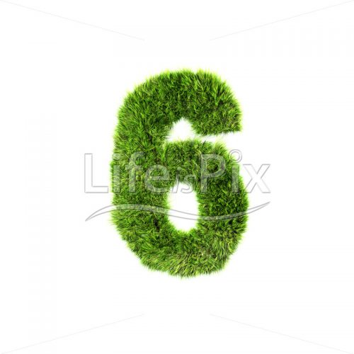 3d grass digit isolated on a white background – 6 – Royalty free stock photos, illustrations and 3d letters fonts