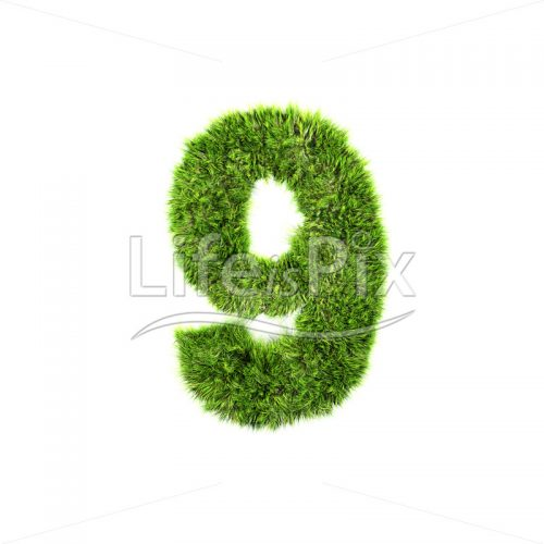 3d grass digit isolated on a white background – 9 – Royalty free stock photos, illustrations and 3d letters fonts