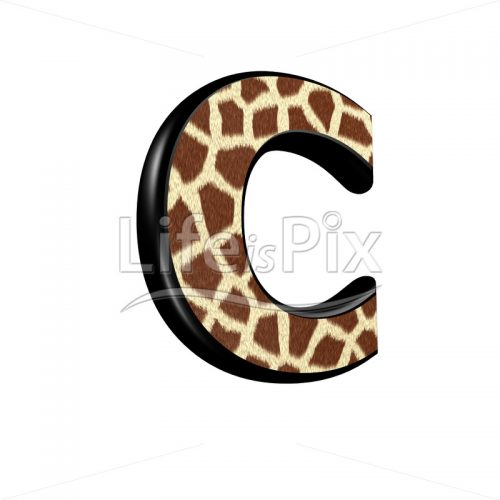 3d letter with giraffe fur texture – C – Royalty free stock photos, illustrations and 3d letters fonts