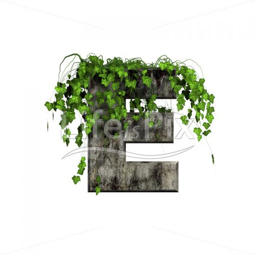 3d stone capital ivy letter E isolated on white background - Royalty free stock photos, illustrations and 3d letters fonts