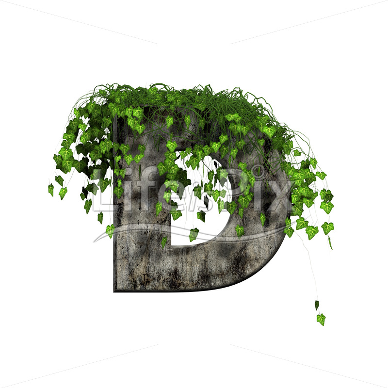 3d stone capital letter and green ivy – D - Royalty free stock photos, illustrations and 3d letters fonts