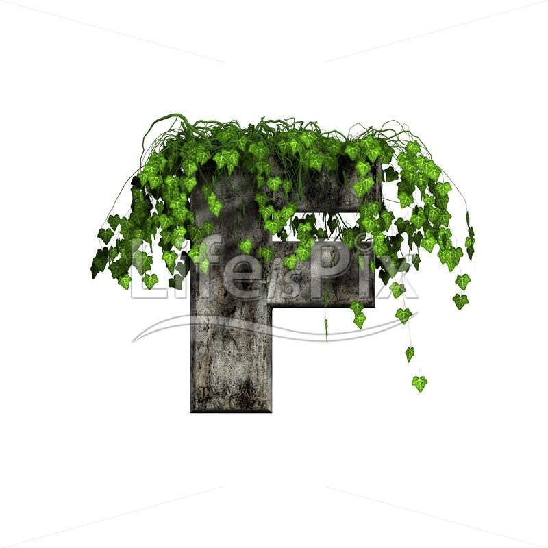 3d stone capital letter and green ivy – F - Royalty free stock photos, illustrations and 3d letters fonts
