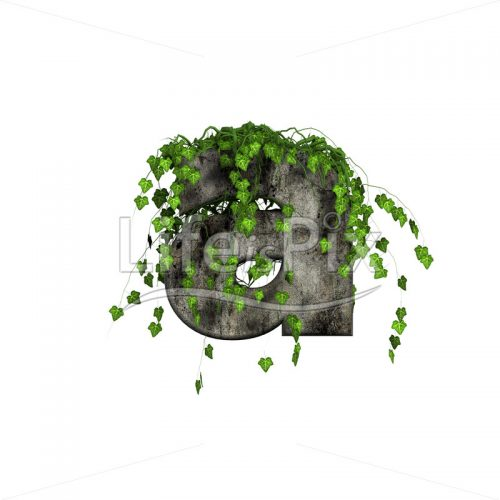 3d stone small letter and green ivy – a - Royalty free stock photos, illustrations and 3d letters fonts