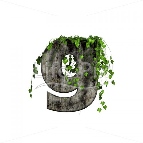 3d stone small letter and green ivy – g - Royalty free stock photos, illustrations and 3d letters fonts