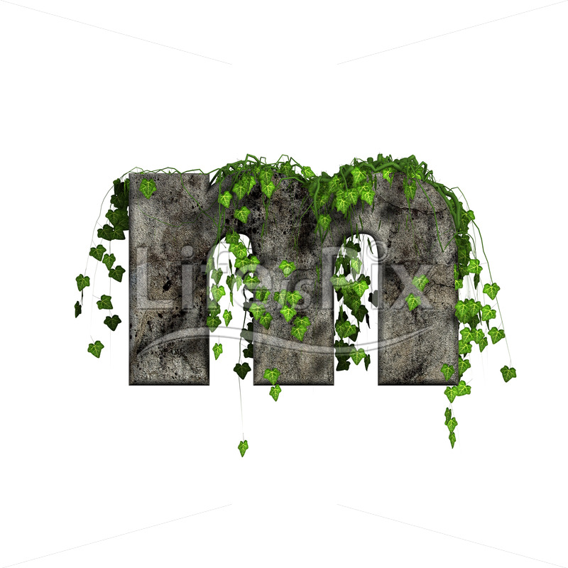3d stone small letter and green ivy – m - Royalty free stock photos, illustrations and 3d letters fonts