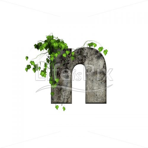 3d stone small letter and green ivy – n - Royalty free stock photos, illustrations and 3d letters fonts