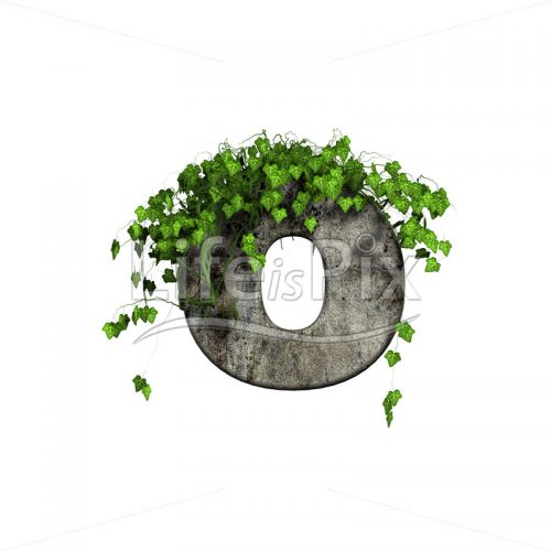 3d stone small letter and green ivy – o - Royalty free stock photos, illustrations and 3d letters fonts