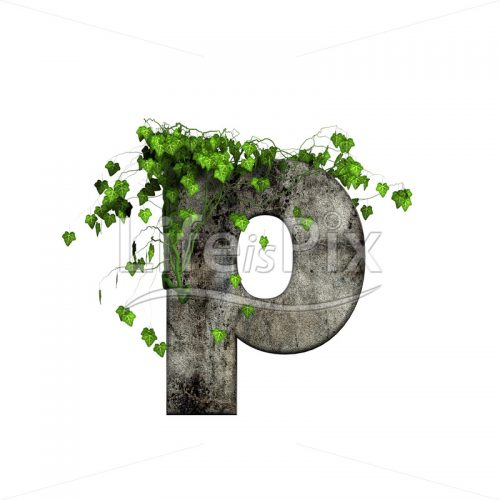 3d stone small letter and green ivy – p - Royalty free stock photos, illustrations and 3d letters fonts