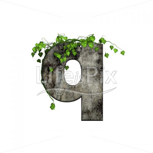 3d stone small letter and green ivy – q - Royalty free stock photos, illustrations and 3d letters fonts