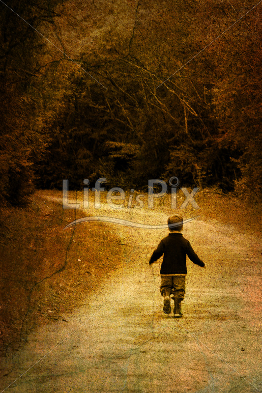 Child alone in forest - Royalty free stock photos, illustrations and 3d letters fonts