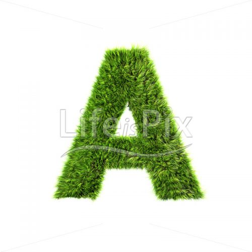 Grass letter isolated on white background – A – Royalty free stock photos, illustrations and 3d letters fonts