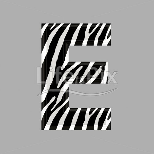 Zebra letter – capital E – 3d illustration – Royalty free stock photos, illustrations and 3d letters fonts
