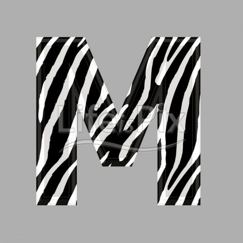 Zebra letter – capital M – 3d illustration – Royalty free stock photos, illustrations and 3d letters fonts