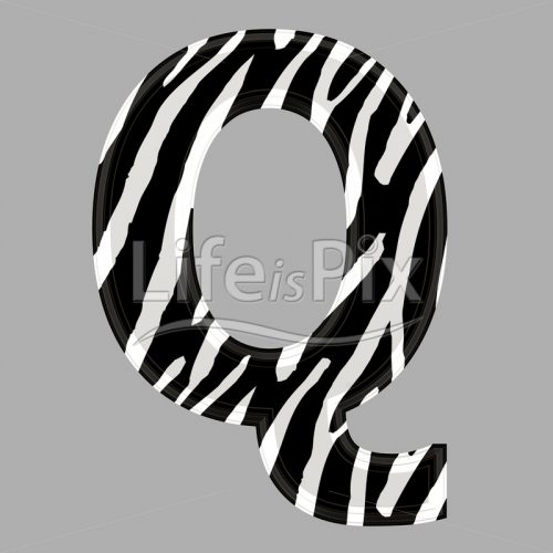 Zebra letter – capital Q – 3d illustration – Royalty free stock photos, illustrations and 3d letters fonts