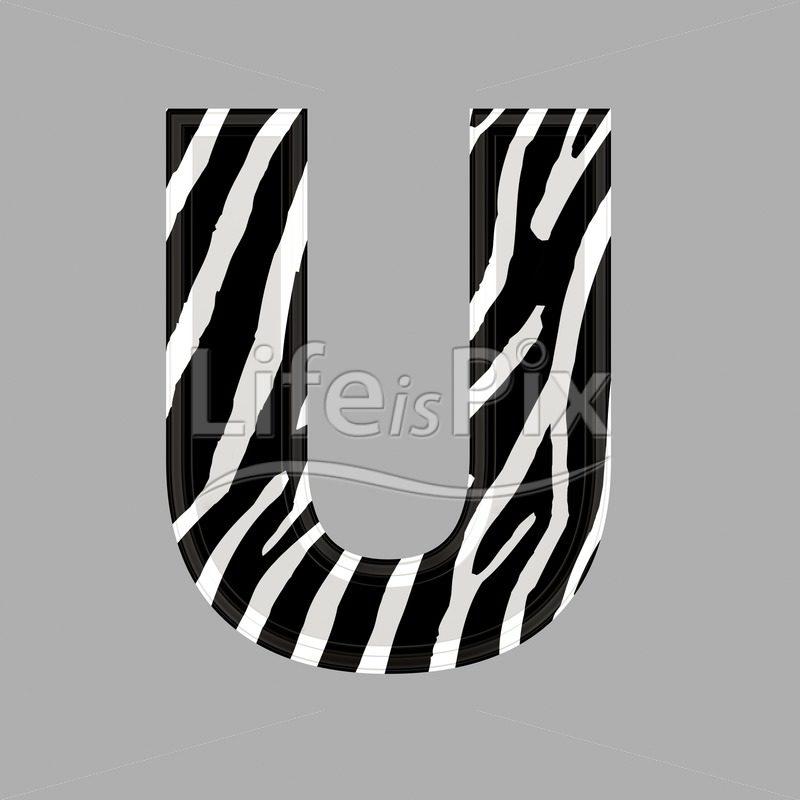 Zebra letter – capital U – 3d illustration – Royalty free stock photos, illustrations and 3d letters fonts