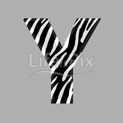 Zebra letter – capital Y – 3d illustration – Royalty free stock photos, illustrations and 3d letters fonts