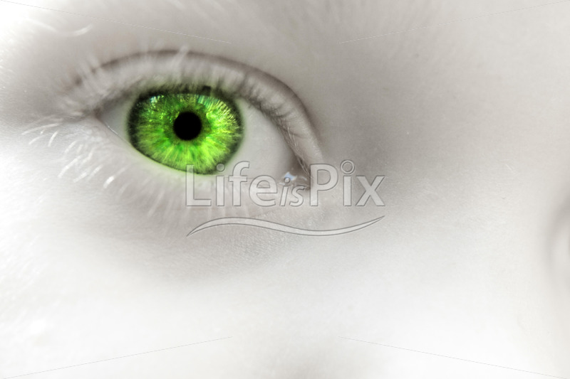 child eye close up - Royalty free stock photos, illustrations and 3d letters fonts