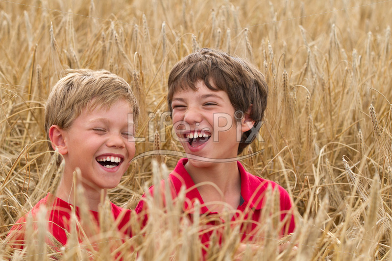 children laughing in a wheat field - Royalty free stock photos, illustrations and 3d letters fonts