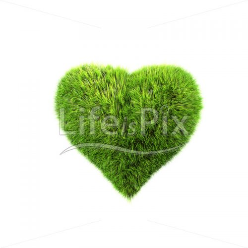 grass Valentine heart – Royalty free stock photos, illustrations and 3d letters fonts