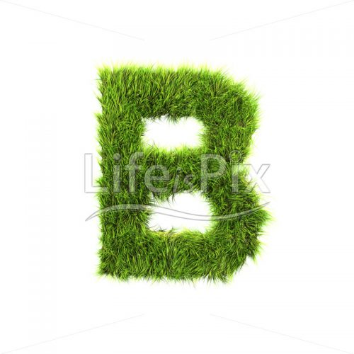 grass letter B isolated on white background - Royalty free stock photos, illustrations and 3d letters fonts
