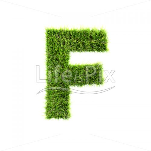grass letter isolated on white background – F – Royalty free stock photos, illustrations and 3d letters fonts