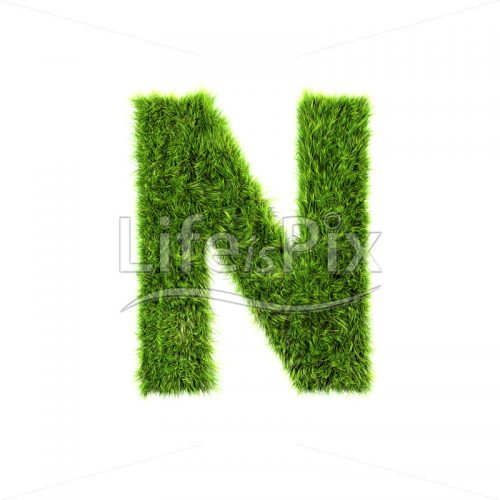 grass letter isolated on white background – N – Royalty free stock photos, illustrations and 3d letters fonts