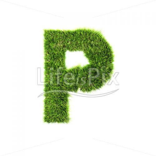 grass letter isolated on white background – P – Royalty free stock photos, illustrations and 3d letters fonts