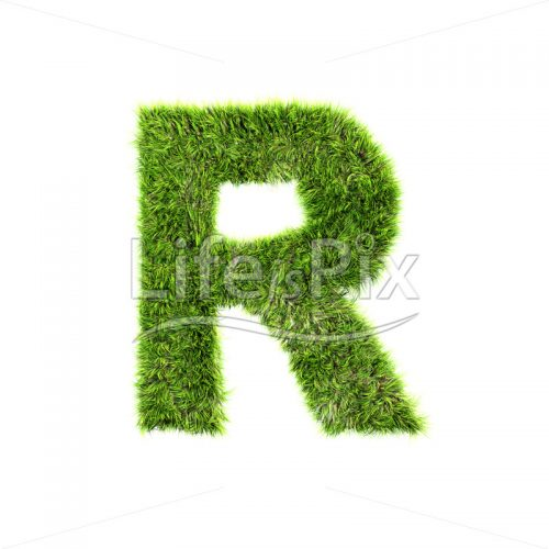 grass letter isolated on white background – R – Royalty free stock photos, illustrations and 3d letters fonts