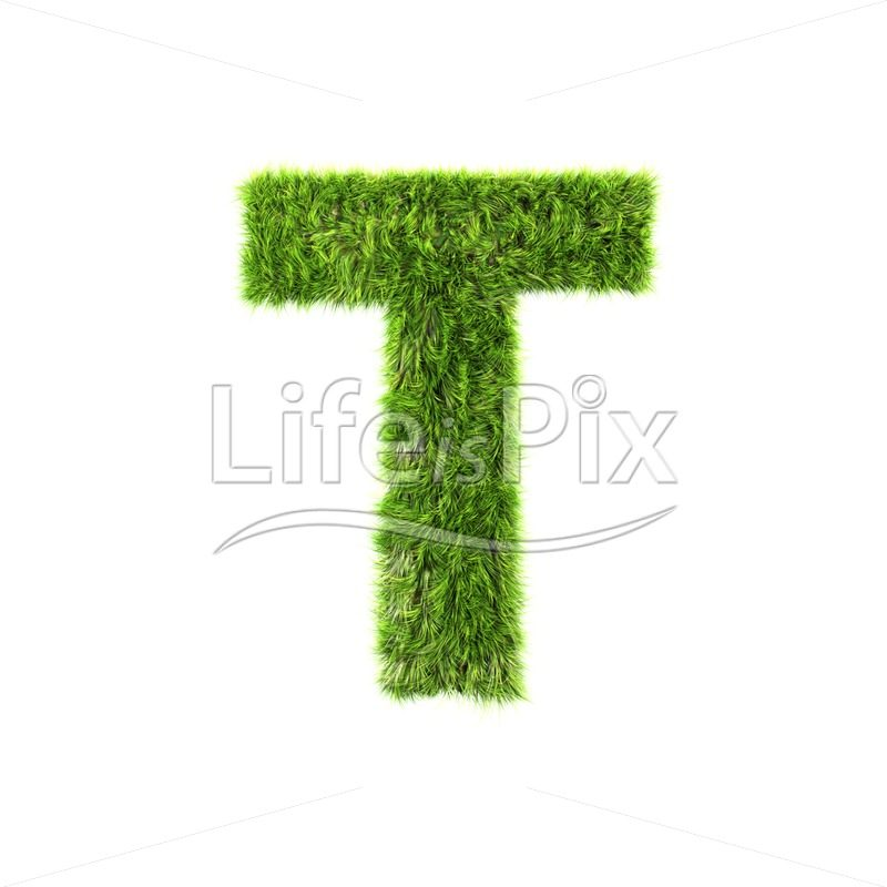 3d grass capital letter isolated on white background – T - 3d letters and fonts - Ecological concept