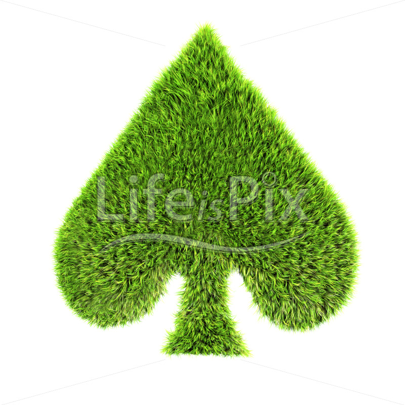 grass spade sign isolated on a white background – Royalty free stock photos, illustrations and 3d letters fonts