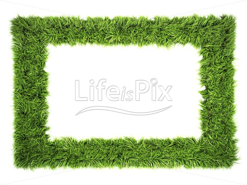 green grass frame isolated on white background - Royalty free stock photos, illustrations and 3d letters fonts