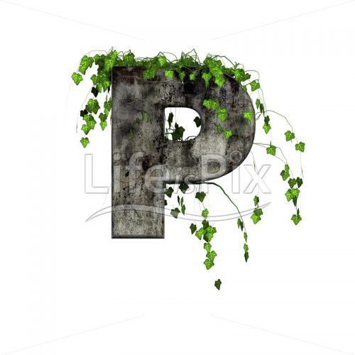 green ivy on 3d stone letter – p - Royalty free stock photos, illustrations and 3d letters fonts