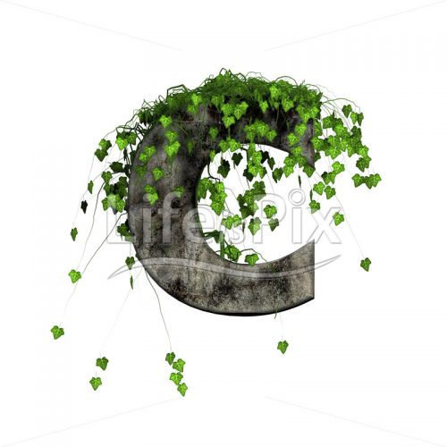 green ivy on 3d stone letter – c – Royalty free stock photos, illustrations and 3d letters fonts