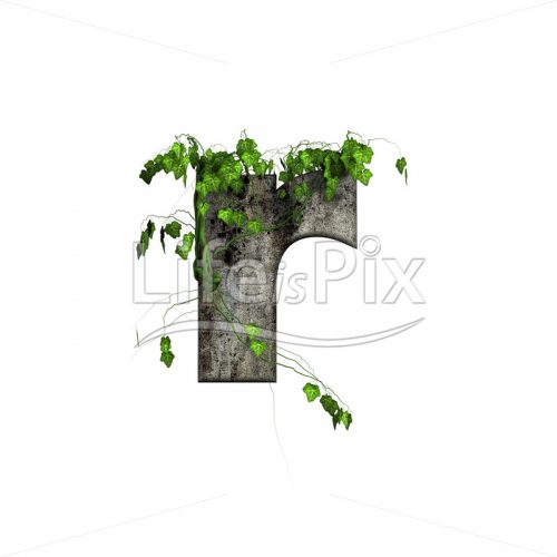 green ivy on 3d stone letter – r – Royalty free stock photos, illustrations and 3d letters fonts