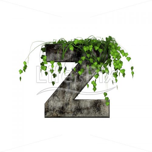 green ivy on 3d stone letter – z – Royalty free stock photos, illustrations and 3d letters fonts