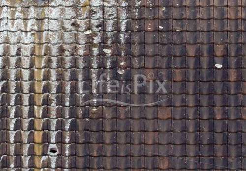 roof texture – Royalty free stock photos, illustrations and 3d letters fonts