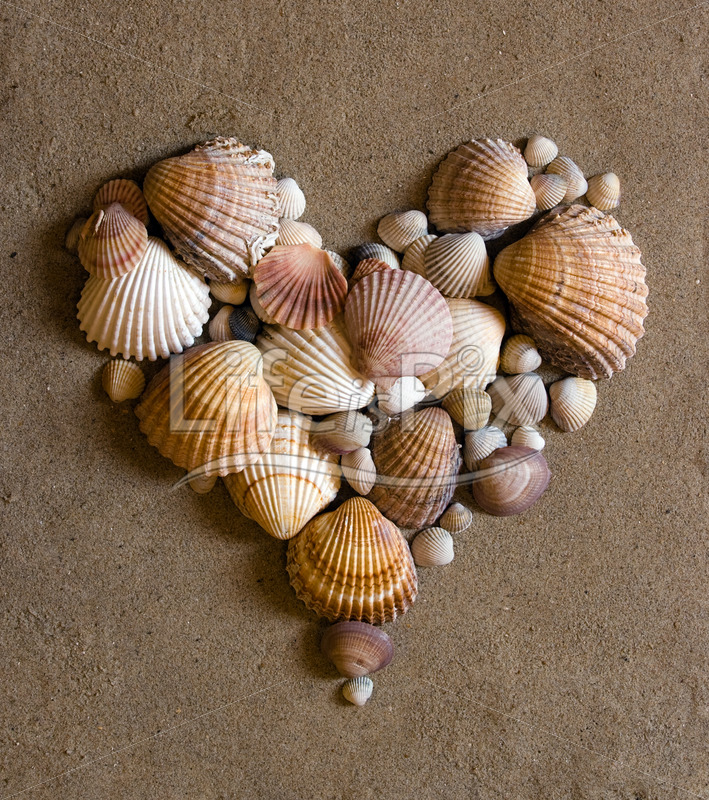 shell heart on sand – Royalty free stock photos, illustrations and 3d letters fonts