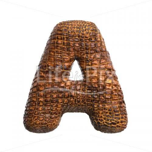 alligator skin letter A – Uppercase 3d font – Royalty free stock photos, illustrations and 3d letters fonts