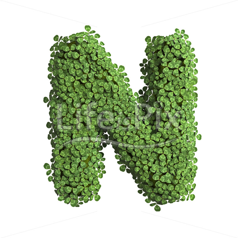 spring letter N – Uppercase 3d character – Royalty free stock photos, illustrations and 3d letters fonts