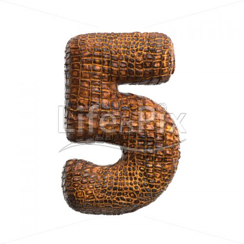 reptile digit 5 –  3d numeral – Royalty free stock photos, illustrations and 3d letters fonts